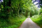 petit chemin de campagne