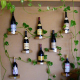 vinsobres