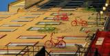 la course des vélos