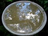 la fontaine et son reflet