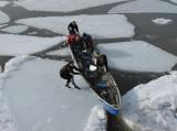 entre les glaces