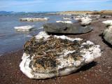 icebergs échoués sur la plage