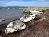 plage d'icebergs