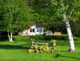 une bicyclette jaune sur le gazon