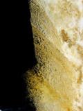 liquide doré