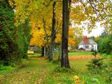 la voiture couleur feuille d'automne