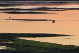 marée montante couleur saumon