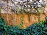 base de mur,  Eauze
