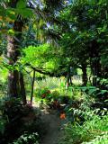 Dans un jardin