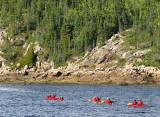 Randonnée en kayaks sur le fjord