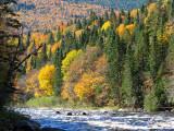 Rivière Sautauriski en automne