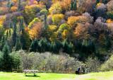 Pique-nique d'automne, Vallée de la Jacques Cartier