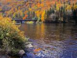 sublime automne
