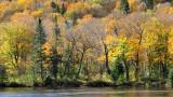 rivage d'automne