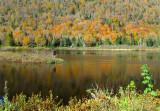 la montagne, l'automne, le reflet