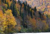 automne furieux.