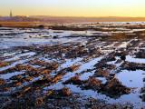 Marée basse sur Rimouski