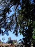 le château sous les arbres