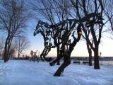 les chevaux de Jos Fafard dans la neige
