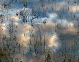 Reste d'innondation