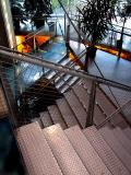 les escaliers de l'aquarium