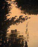 Chantilly, reflet cuivré sur l'Oise