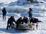 l'équipe de l'ile aux grues en pleine action