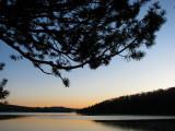 chapeau de pin sur le lac St-Joseph