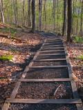 L'escalier  sentier