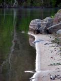 plage de sable gris