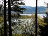 le lac entre les arbres
