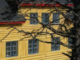 chalet jaune et arbre mort