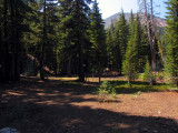 Circular clearing for my campsite at Magee lake