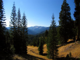 Steavelle Meadows in the Trinity Alps