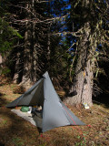 My campsite in mdw along old pct east of White Mtn