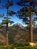 Preston Peak from divide