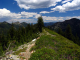 Kidder Lake trail to PCT looking east