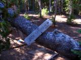 Jack Spring trail sign