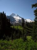 Mt Jefferson on S Breitenbush Crk trail