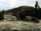 Roadside Rockadile and Frogarock