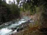North Fork of the Salmon River