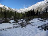 Stuart creek upper valley