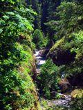 Eagle Creek views