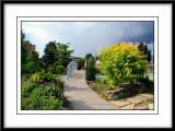 Rockway Gardens in Kitchener Ontario