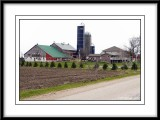 Barns On the Way to Alma, ON