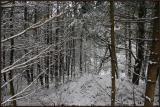 BC Snowfall