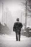 29th November 2010  snowstorm