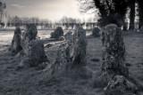 Winter Stones 4