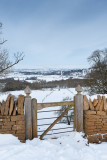 A (Winter's) Look Over The Gate