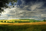 Cotswold Countryside 5
